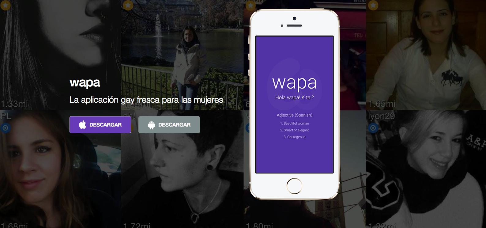aplicaciones para ligar_wapa