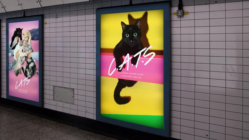 Cats Londres