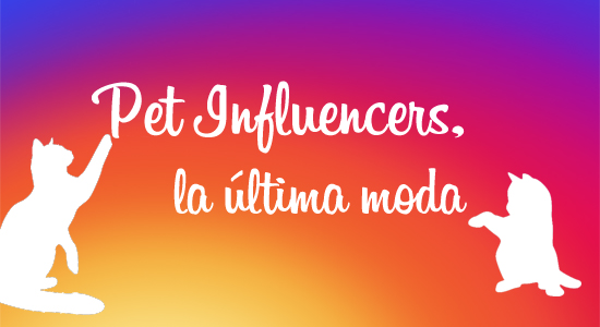 pet influencers arnold madrid